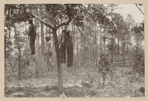 Image for Photograph of the lynched bodies of four men
