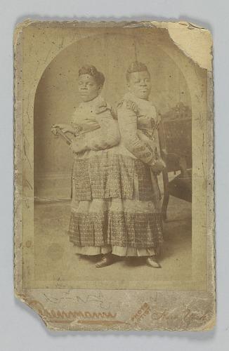 Image for Albumen print of Millie and Christine McCoy