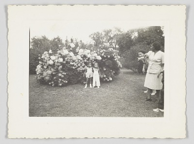 Photographic print of two children posing in front of a flowering bush