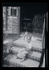Thumbnail for Set of four black and white photographs and five negatives