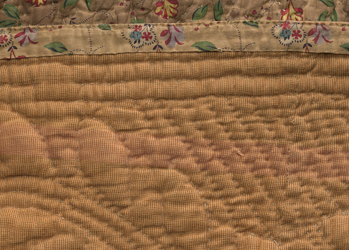 Image for Quilted petticoat