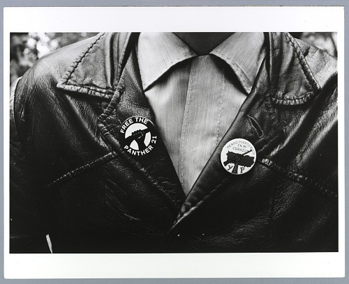 Image for Photograph of the Young Lords Party and Black Panther Party buttons
