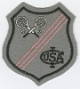 Thumbnail for Patch for the International Lawn Tennis Club of the United States