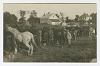 Thumbnail for Postcard of soldiers inspecting horses