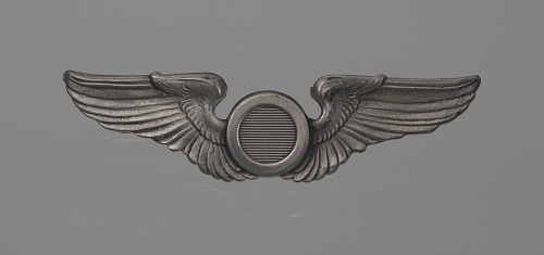 Image for Bombadier wings owned by Fenton B. Sands