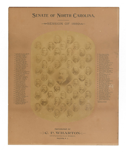 Image for Photographic print of the Senate of North Carolina, Session of 1889