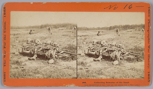 Image for 918. Collecting Remains of the Dead