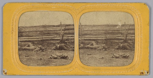 Image for Stereograph of deceased Confederate soldiers near a fence at Antietam, Maryland