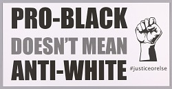 """Posters stating """"Pro-Black Doesn't Mean Anti-White"""" used at MMM 20th Anniversary"""