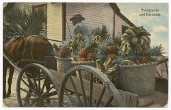 Postcard of a banana and pineapple vendor
