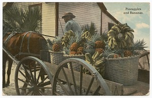 images for Postcard of a banana and pineapple vendor-thumbnail 1