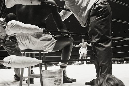 Image for Ali vs.Terrell, The Astrodome, Houston, 1967