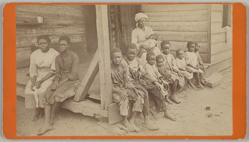 Image for No. 615, The Way the Negro Race is Dying Out: Mrs. Whitaker and her Children