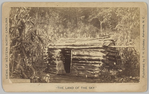 Image for No. 1036, Cabin in the Corn