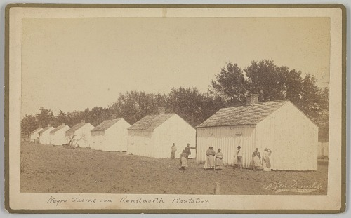 Image for Negro Cabins on Kenilworth Plantation