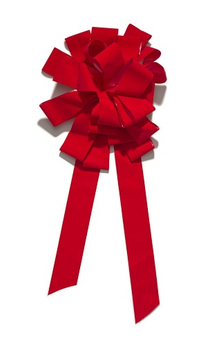 Image for Three red car bows from the car giveaway episode of The Oprah Winfrey Show