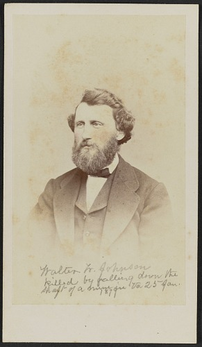 Image for Carte-de-visite portrait of Walter W. Johnson