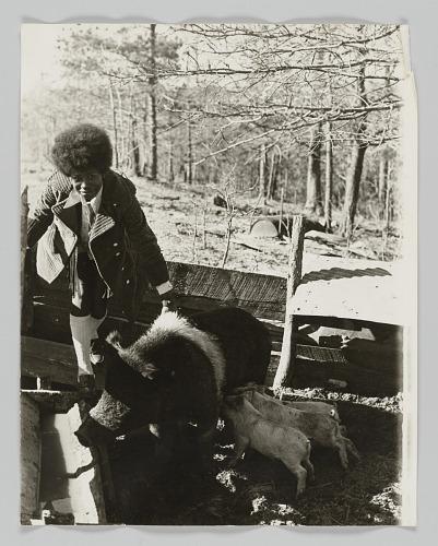 Image for Portrait of Deloris Porter