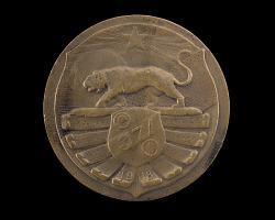 Bronze Medal honoring the 371st Infantry