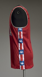 images for Jersey worn by Carl Lewis at the 1984 Summer Olympics-thumbnail 4
