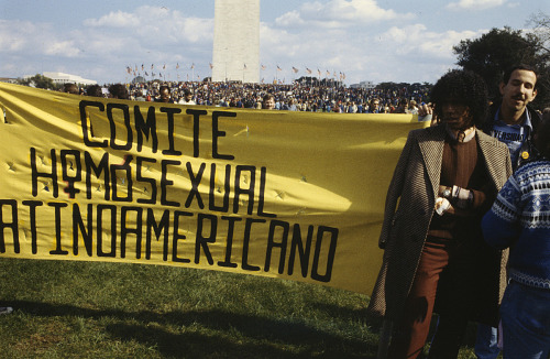 Image for Photographic slide of the first March on Washington for Lesbian and Gay Rights