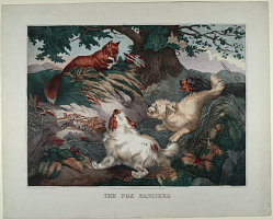 The Fox Fanciers