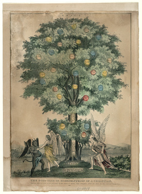 The Good Tree or Hieroglyphics of a Christian