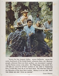 United Farmworkers Poster