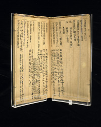 Chinese Immigrant Study Guide