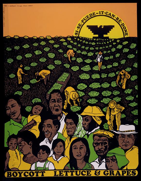 Boycott lettuce poster