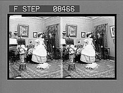 [Posed narrative.] No. 173 : stereoscopic photonegative