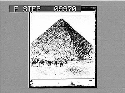 images for Pyramids in Egypt. 21917 photonegative