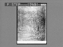 [Snow scene.] Photonegative