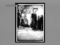 [Snow.] Interpositive