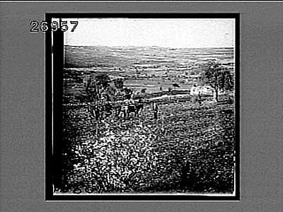 Resources :: The valley of Rephaim, ancient Hebrew battleground