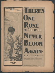 """There's One Rose That Will Never Bloom Again"""