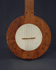 Five-String Fretless Banjo
