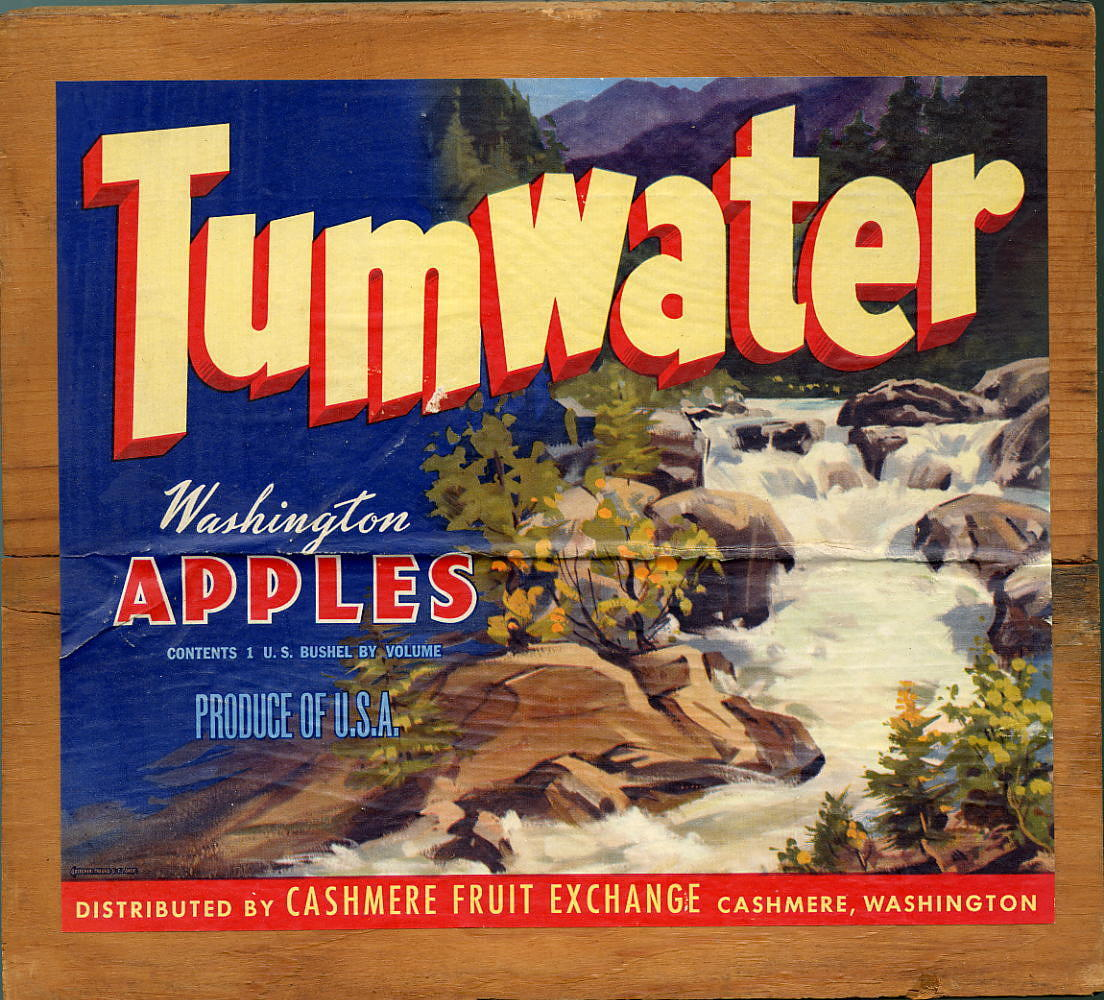 Tumwater Apple Crate Label, 1920s