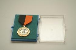 Social Studies Medal