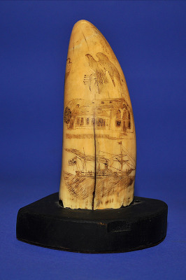 Scrimshaw Sperm Whale Tooth, mid 19th Century