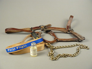 """images for Halter for """"First Flight""""-thumbnail 2"""