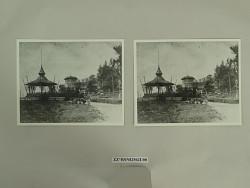 photographs; negatives