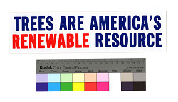 Trees Are America's Renewable Resource