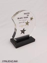 Democratic National Committee Award
