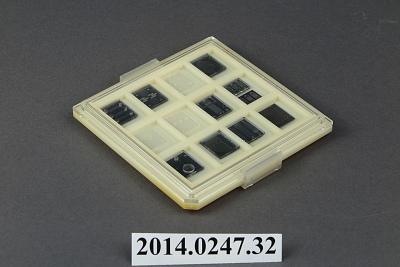 prototype microchips
