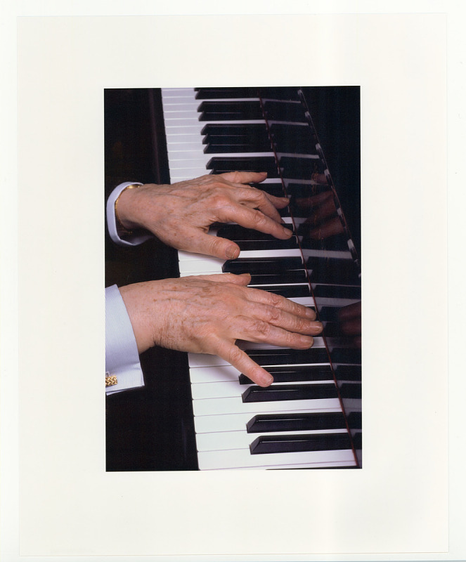 Image for Vladimir Horowitz at the piano