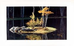 Pond Reflection, Maine