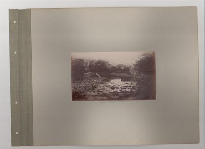 Camp on Pinkham Creek