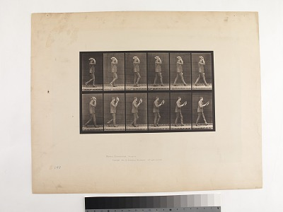 Animal Locomotion. Plate 44.