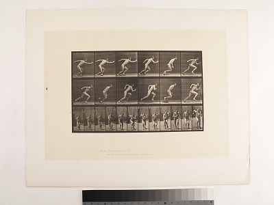 Animal Locomotion. Plate 59.